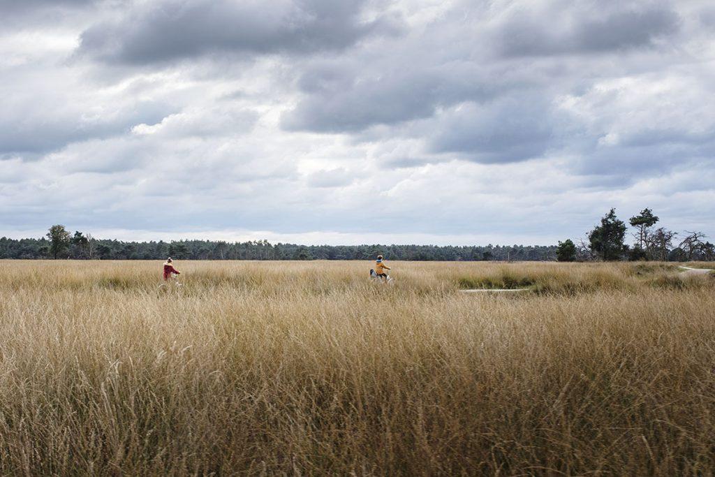 Fietsen in Nationaal Park de Hoge Veluwe - Reislegende.nl