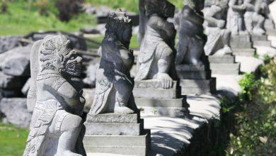 Photo of Pairi Daiza: 8 verschillende werelden in één