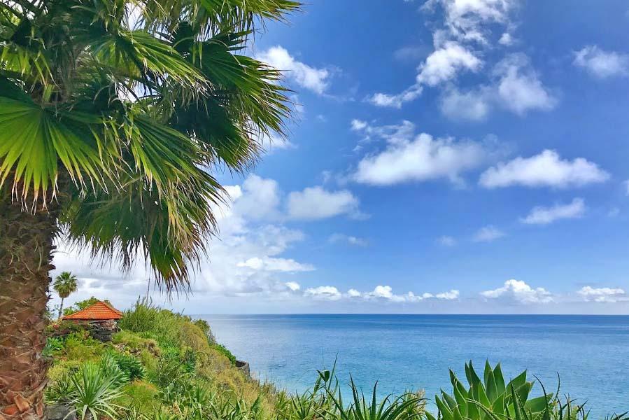 Fajã dos Padres; Garden of Eden op Madeira - AllinMam.com