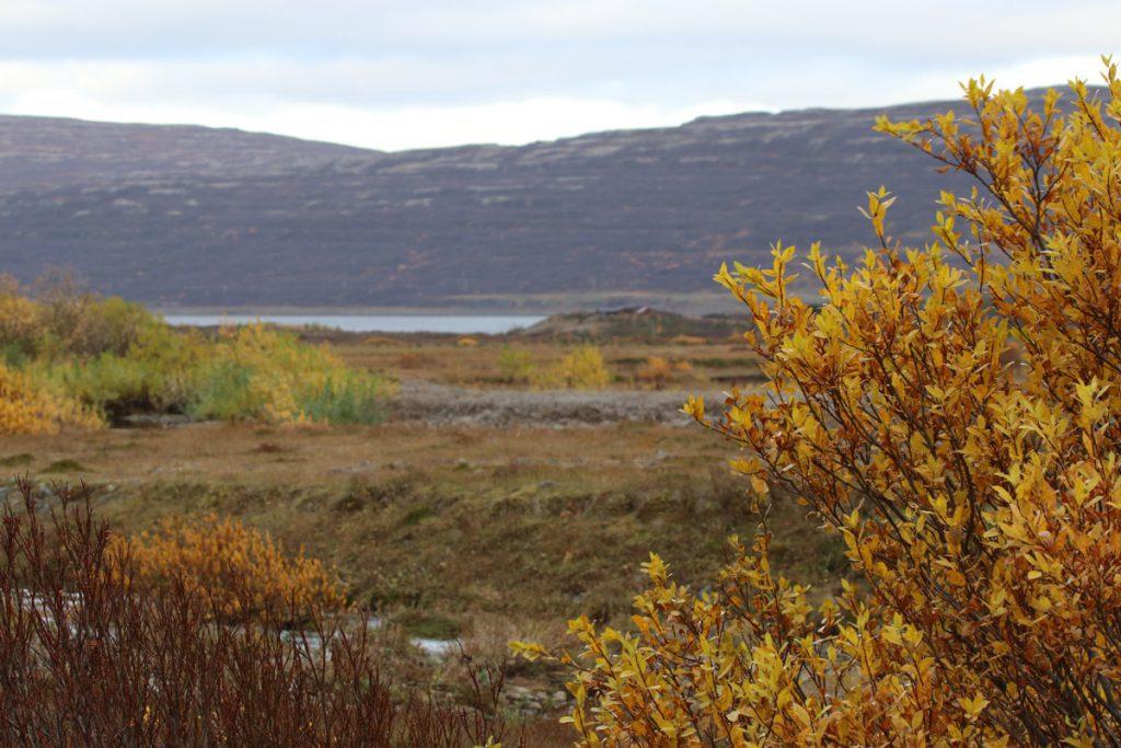 Herfst in de westfjorden IJsland Reislegende - Reislegende.nl