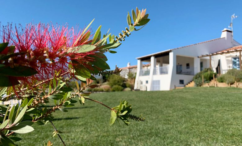 Photo of 4x prachtige accommodatie in Alentejo