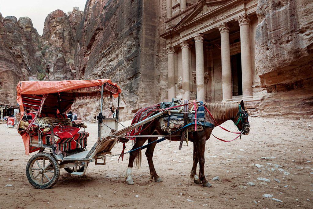 Meldt dierenmishandeling in Petra  - Tips voor een bezoek aan Petra, wereldwonder in Jordanië - Reislegende.nl