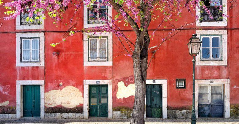 Photo of Lissabon stadswandeling door de leukste en meest authentieke wijken