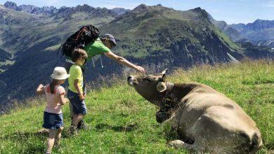 Wandelen in Montafon met kinderen - AllinMam.com