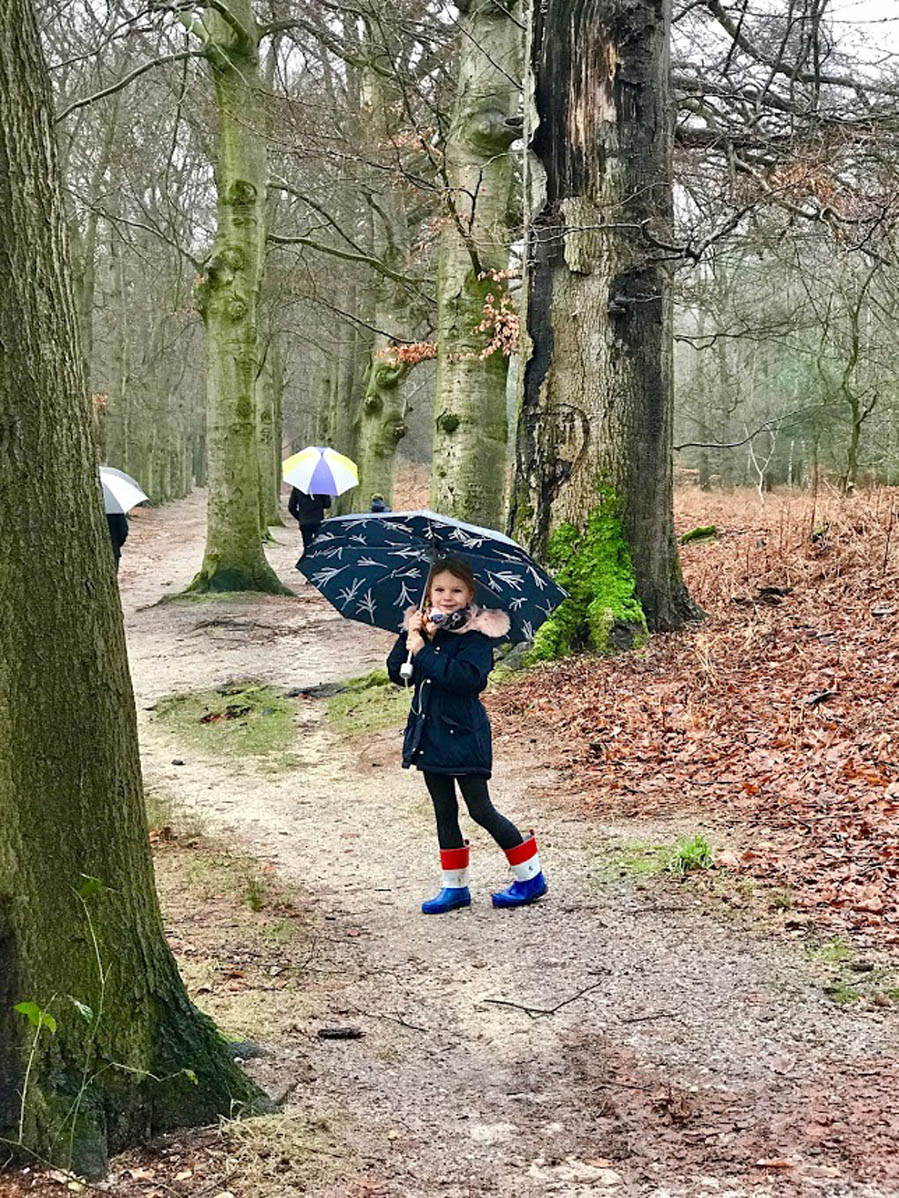 Wandelen over de Amerongse Berg - AllinMam.com