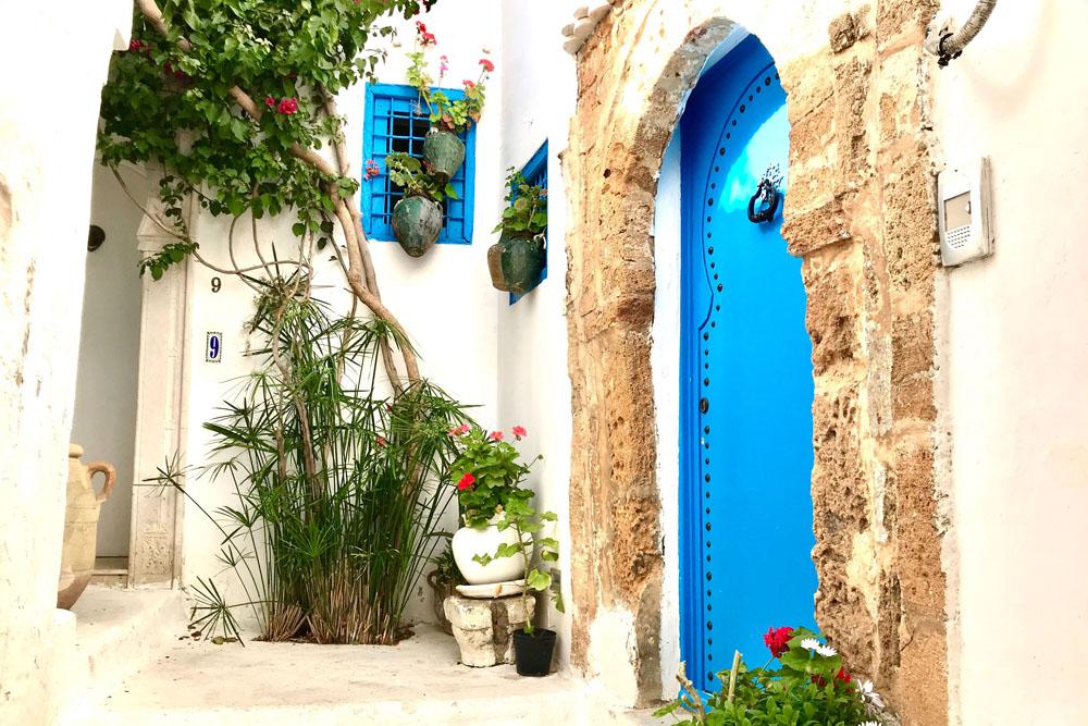 Sidi Bou Said - Wat te doen in Tunesië - Reislegende.nl