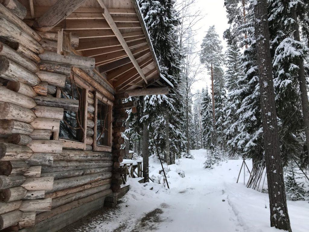 Lehmonkarki Lakeland Finland - Reislegende.nl
