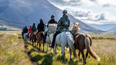 5 hoogtepunten in Noord-IJsland - Reislegende.nl