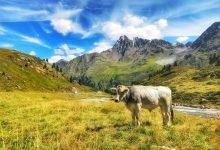 Photo of Kaunertaler Gletscherstrasse, één van de mooiste panoramawegen van Oostenrijk