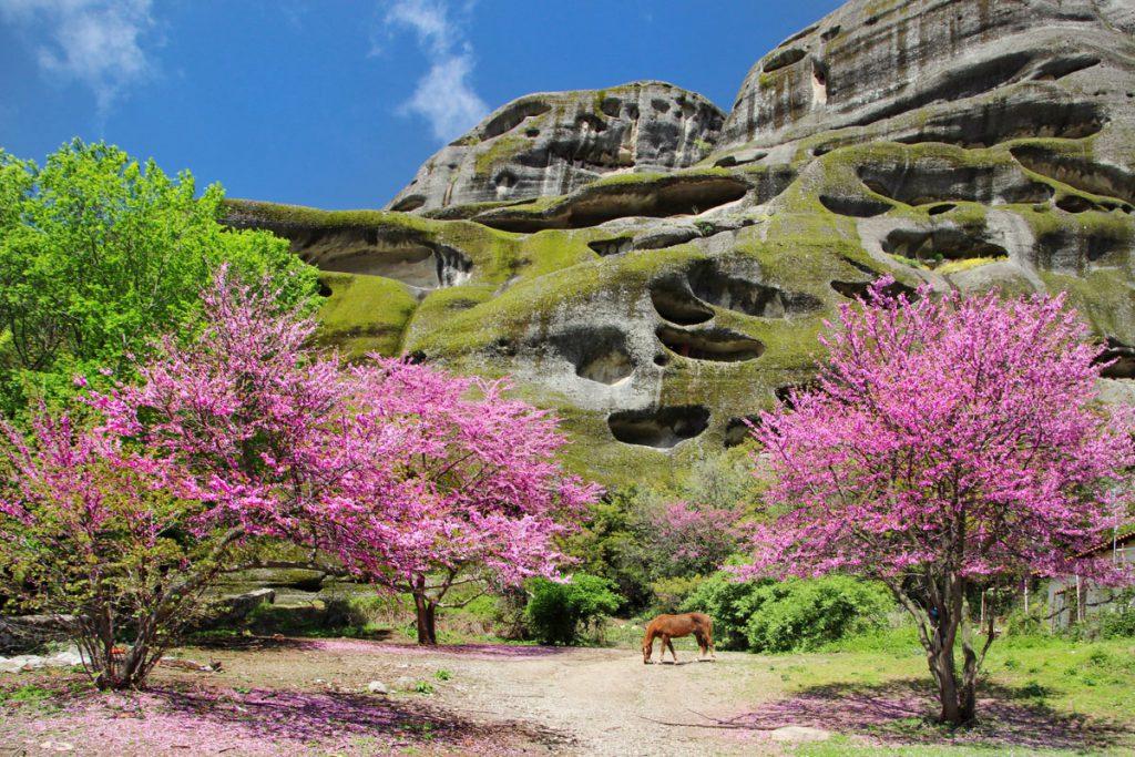 Meteora kloosters, werelderfgoed in Griekenland. Voorjaar in Meteora
