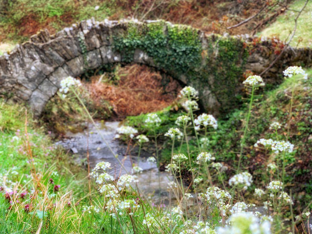 Stone bridge of Goura - Zagori - Bruggen van Zagoria in noorden van Griekenland - Reislegende.nl