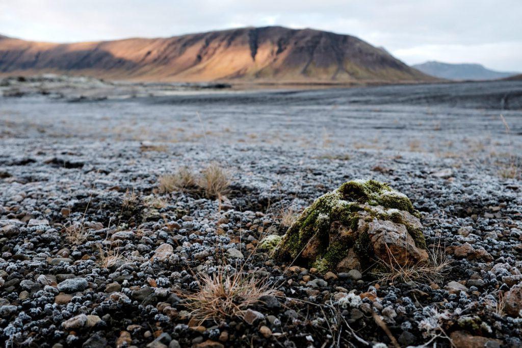 Vulkanisch gebied op Snaefellsnes schiereiland IJsland ReislegendeVulkanisch gebied op Snaefellsnes schiereiland IJsland Reislegende - Reislegende.nl