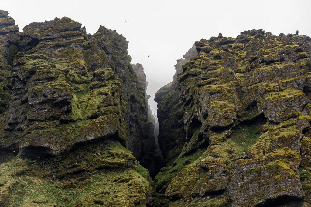 Rauðfeldsgjá Gorge, Snaefellsnes highlights IJsland roadtrip - Reislegende.nl