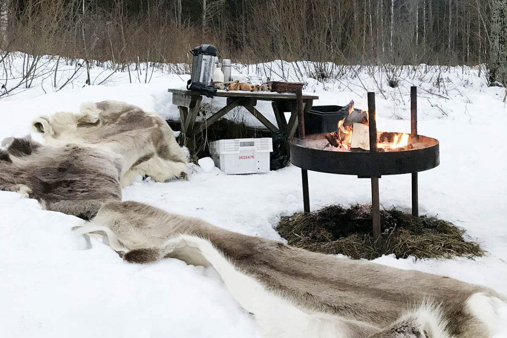 Outdoor activiteiten in Zuid Finland winter - Reislegende.nl