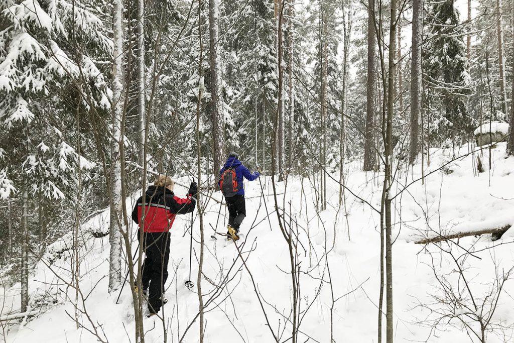 Sneeuwschoen wandelen in zuid Finland Lakeland - Reislegende.nl