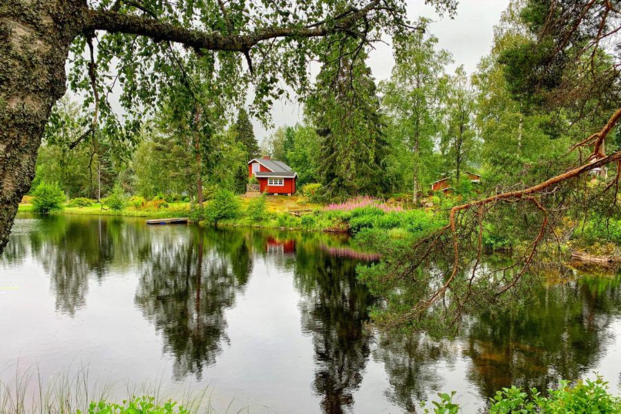 Glaskogen natuurreservaat - Reislegende.nl