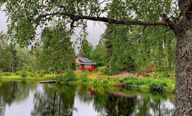 Photo of Wat te doen in het Zweedse Glaskogen Natuurreservaat?