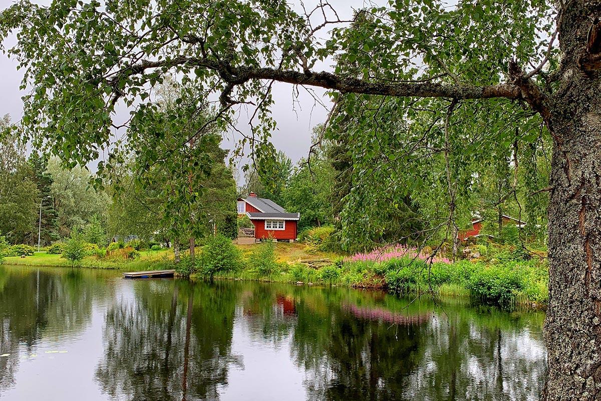 Accommodatie in Glaskogen - Wat te doen in het Zweedse Glaskogen Natuurreservaat? - Reislegende.nl