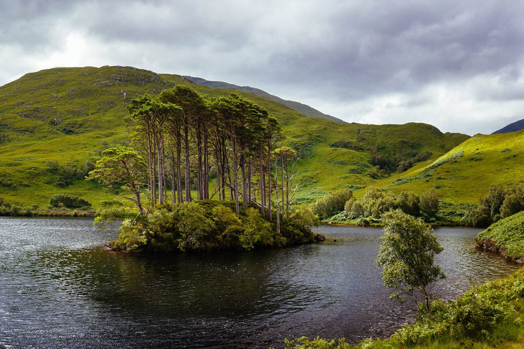 Eilean na Moine, Harry Potter filmlocaties in Schotland - Reislegende.nl