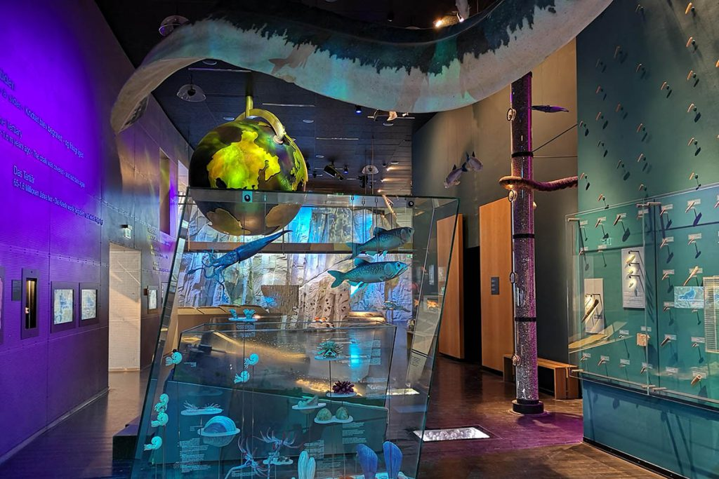 Geo Center museum Møns Klint - Krijtrotsen Denemarken, Møns Klint en Stevns Klint - Reislegende.nl