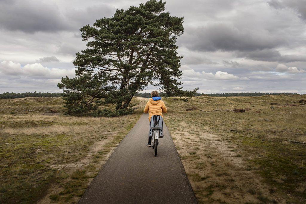 Wild spotten tijdens het fietsen op de Hoge Veluwe - Reislegende.nl