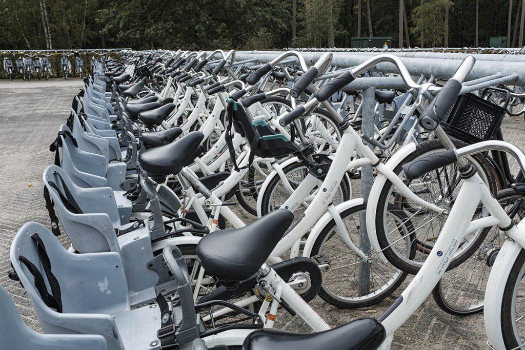 Gratis witte fietsen op de Hoge Veluwe - Fietsen op de Hoge Veluwe - Reislegende.nl