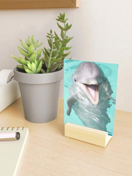 Dolfijn mini print met standaard - Reislegende.nl