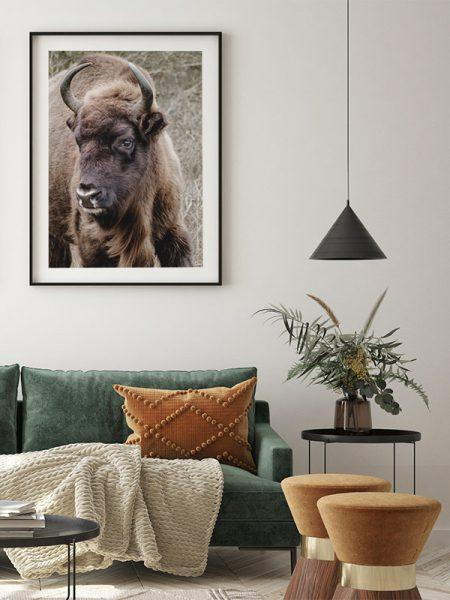Poster Europese bizon (wisent) - Reislegende.nl
