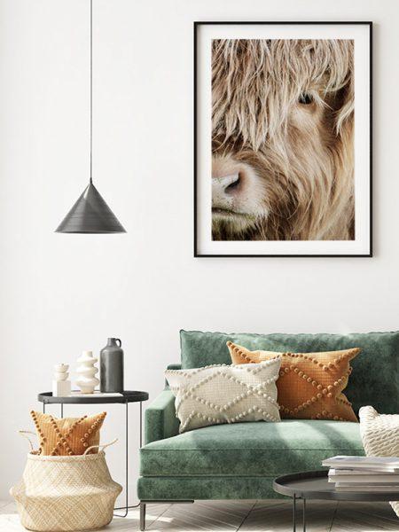 Poster Schotse hooglander portret - Reislegende.nl