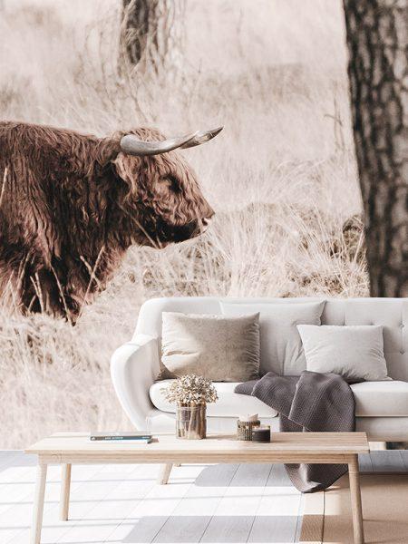 Behang Schotse hooglander - Reislegende.nl