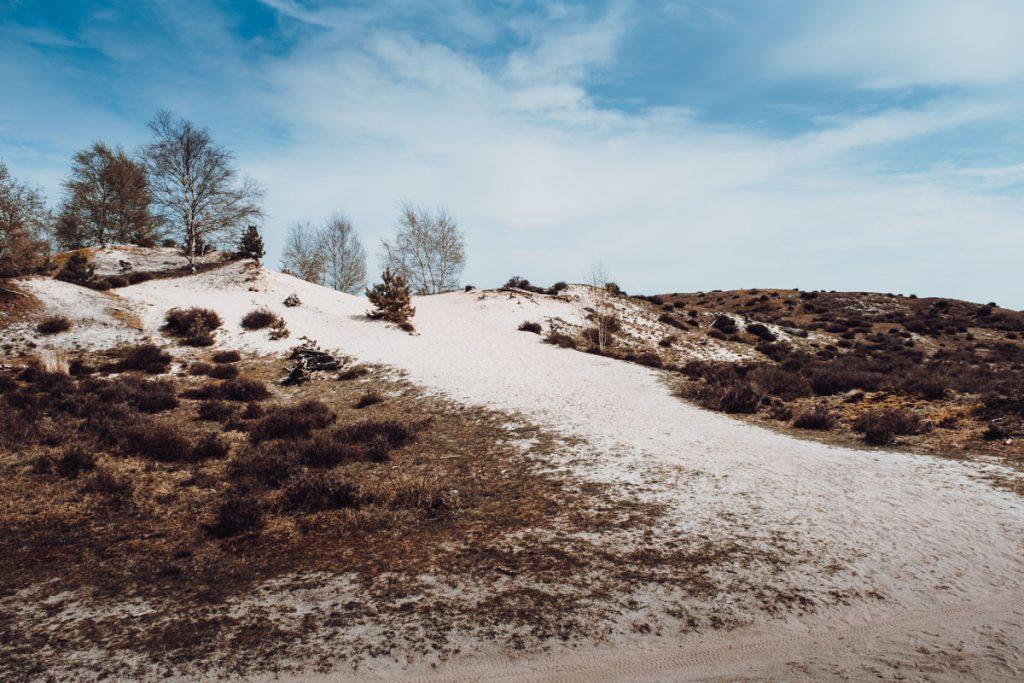 Hulshorsterzand zandverstuiving, prachtig gebied voor een korte of lange wandeling - Reislegende.nl