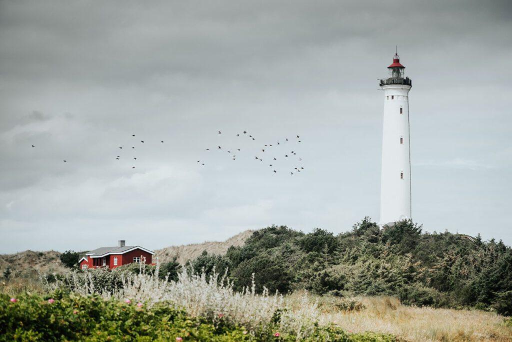 Lyngvig Fyr - Route langs vuurtorens aan de westkust van Denemarken - Reislegende.nl